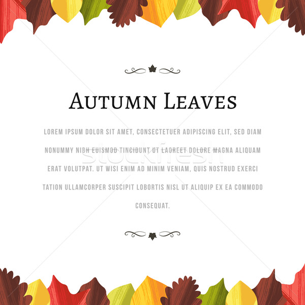 Autumn Background with Leaves at the Top and Bottom Stock photo © cajoer