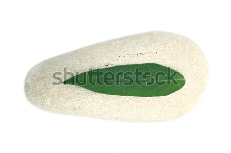 каменные мудрец белый лист медицина Spa Сток-фото © Calek