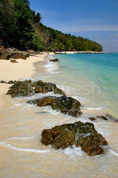 Bamboo island Stock photo © Calek