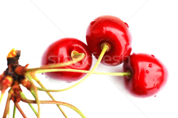 Cherries IV Stock photo © Calek