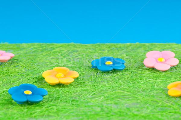 Weide groene kleur bloemen hemel voorjaar Stockfoto © Calek