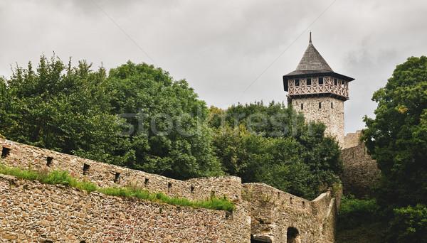 城 チェコ共和国 壁 石 レンガ ヨーロッパ ストックフォト © Calek