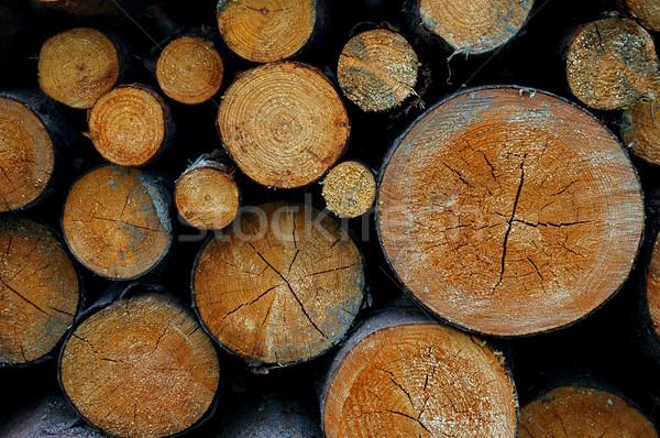 Wood Stock photo © Calek
