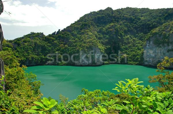 зеленый озеро соль центр тайский острове Сток-фото © Calek