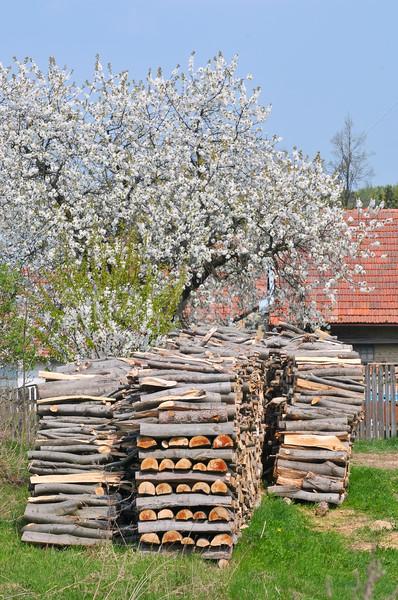 Gehakt hout verwarming winter boom Stockfoto © Calek