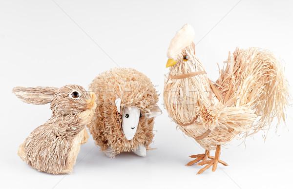 Konijn schapen haan witte achtergrond vogel Stockfoto © Calek