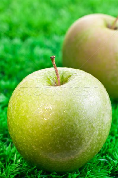 Verde maçã dois maçãs grama Foto stock © calvste