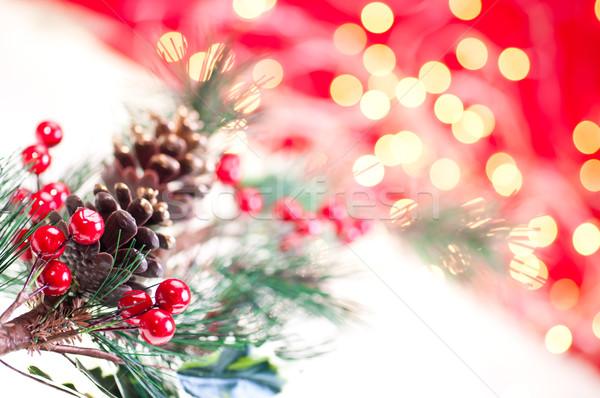 Рождества филиала украшение дерево зеленый Сток-фото © calvste