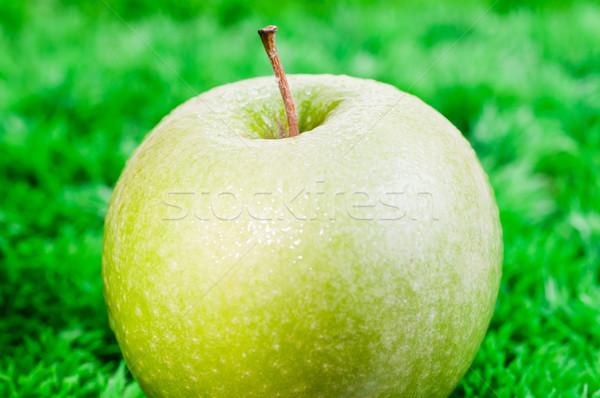 Verde maçã grama grama verde comida Foto stock © calvste