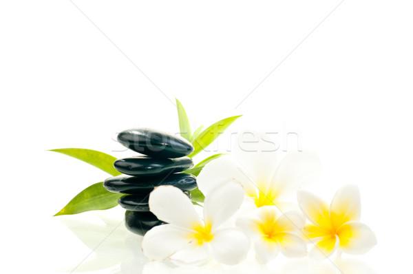 черный zen каменные белые цветы бамбук цветок Сток-фото © calvste
