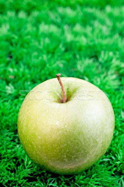 Zöld alma közelkép fű étel fitnessz Stock fotó © calvste