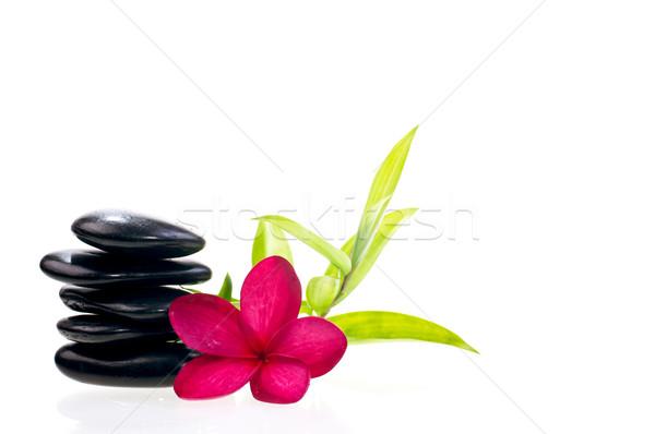 черный сбалансированный zen камней бамбук белый Сток-фото © calvste