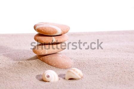 морем снарядов песчаный пляж белый фон пространстве Сток-фото © calvste