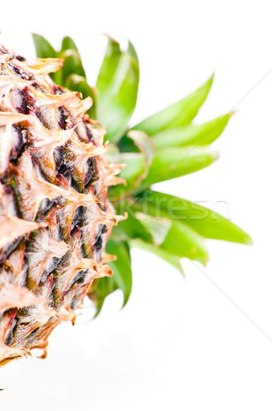 Ananás para baixo verde asiático trópicos Foto stock © calvste