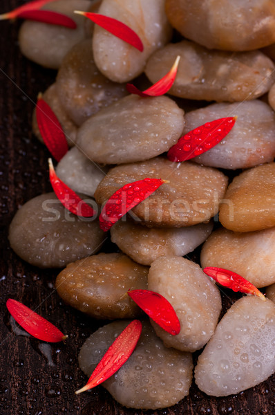 Red petals of flower on wet yellow river stone  Stock photo © calvste