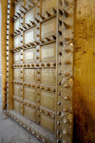 Spiky brass door Stock photo © calvste