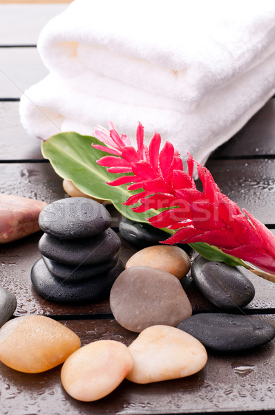 Zen wellness with red ginger flower Stock photo © calvste