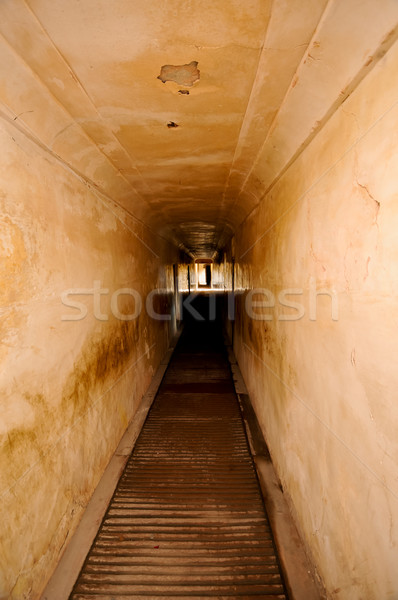 Tunnel amber fort abstract licht leven Stockfoto © calvste