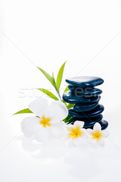 Stock photo: White frangipani flowers on zen stones with bamboo leaves