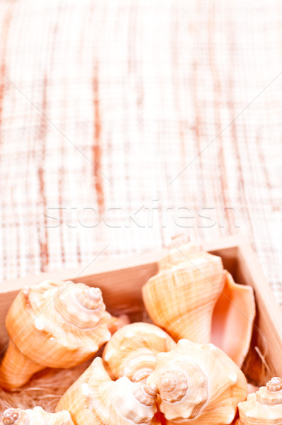 Sea shells in a box on a coconut mat Stock photo © calvste