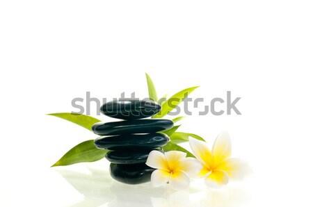 Kiegyensúlyozott zen kövek bambusz fehér virág Stock fotó © calvste