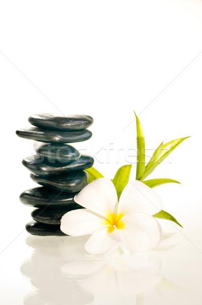 バランスのとれた 禅 石 花 竹 8 ストックフォト © calvste