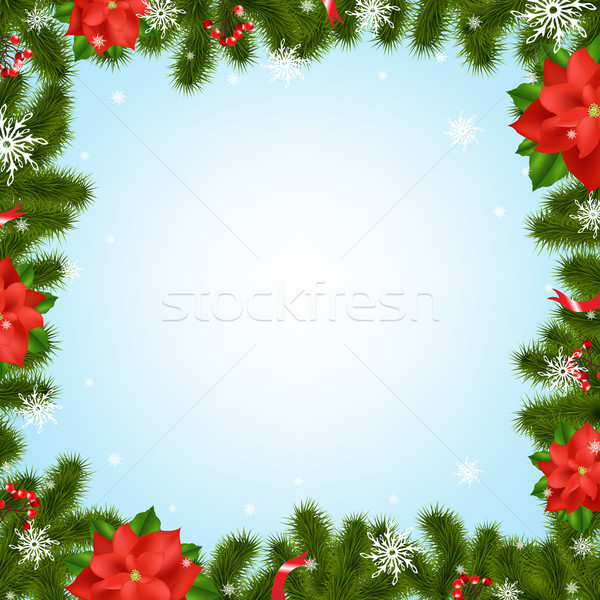 Border Fir-tree Branches With Poinsettia Stock photo © cammep