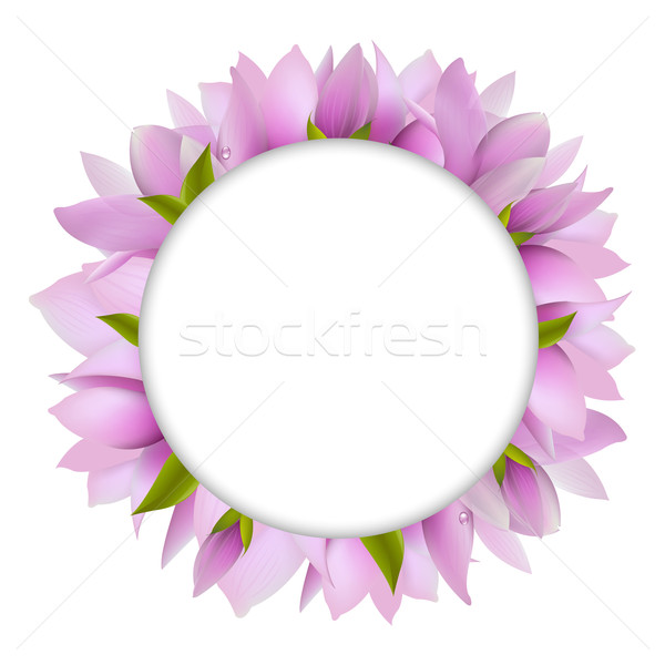 Magnolia With Circle Stock photo © cammep