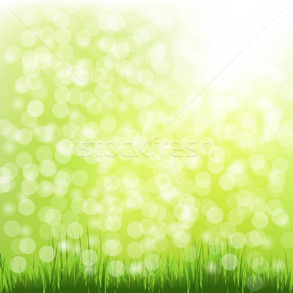 Green Grass With Bokeh Stock photo © cammep