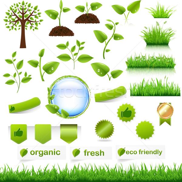 Groene eco ingesteld geïsoleerd witte ontwerp Stockfoto © cammep