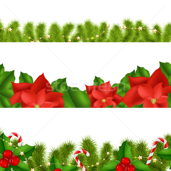 Borders Fir-tree Branches With Holly Berry Stock photo © cammep