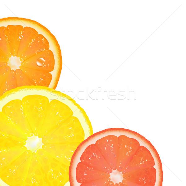 Citrus Stock photo © cammep