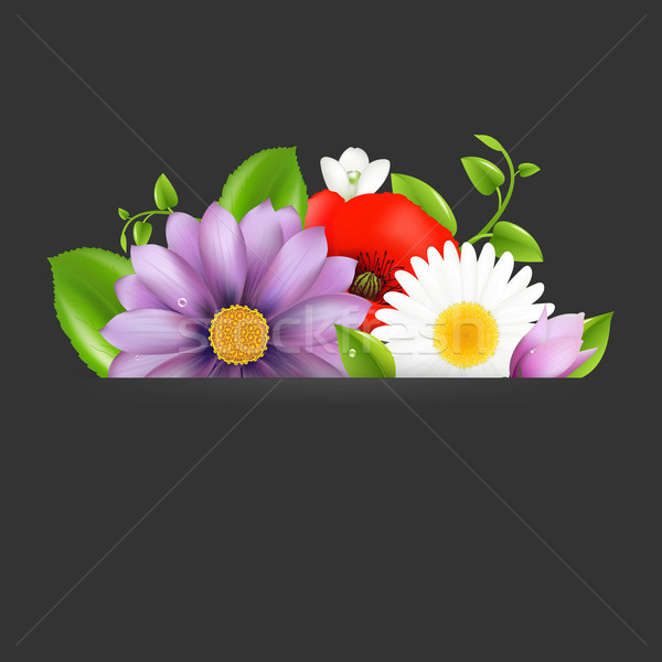 Summer Flowers With Divider Stock photo © cammep