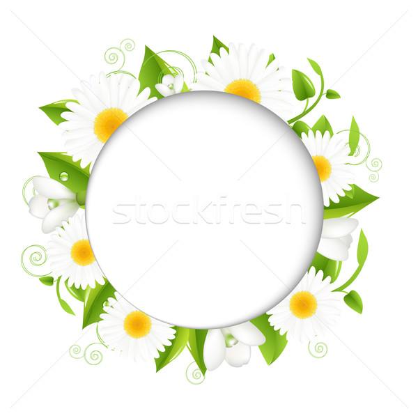 Nyár illusztráció izolált fehér virág víz Stock fotó © cammep