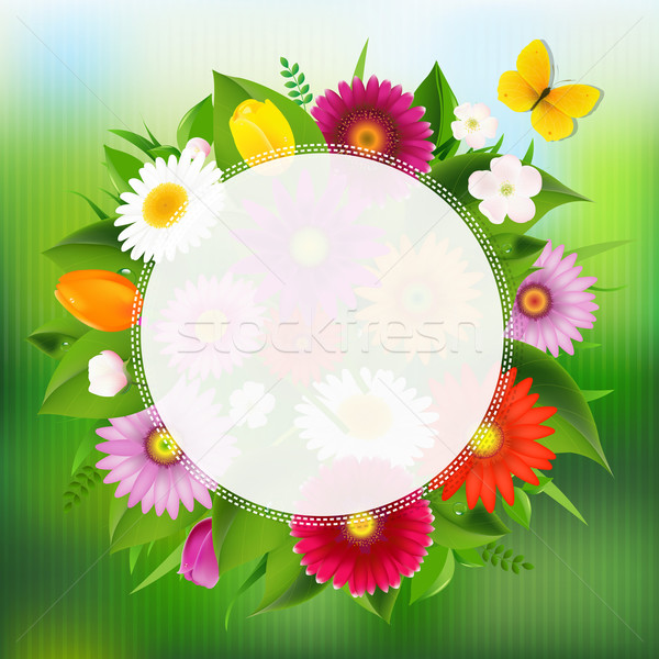 Summer Poster With Flowers Stock photo © cammep
