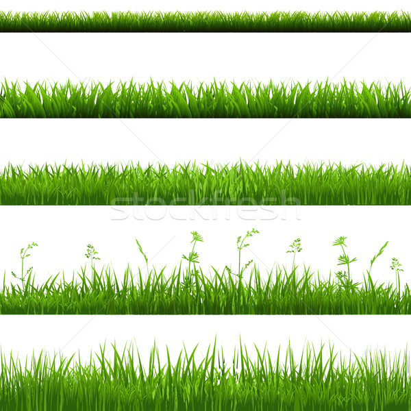 Grass Borders Big Set Stock photo © cammep
