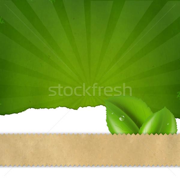 Green Sunburst Background Texture Stock photo © cammep