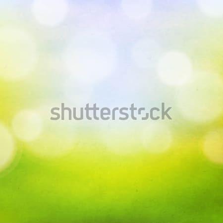 Naturaleza bokeh gradiente primavera diseno Foto stock © cammep