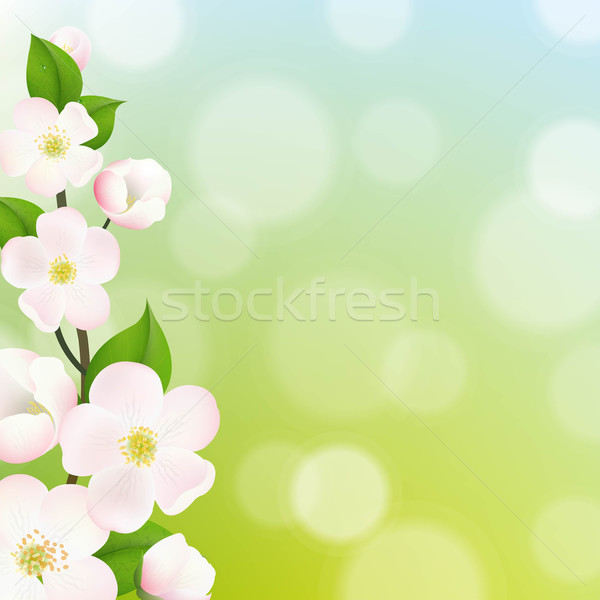 Pastel apple tree flores quadro gradiente Foto stock © cammep