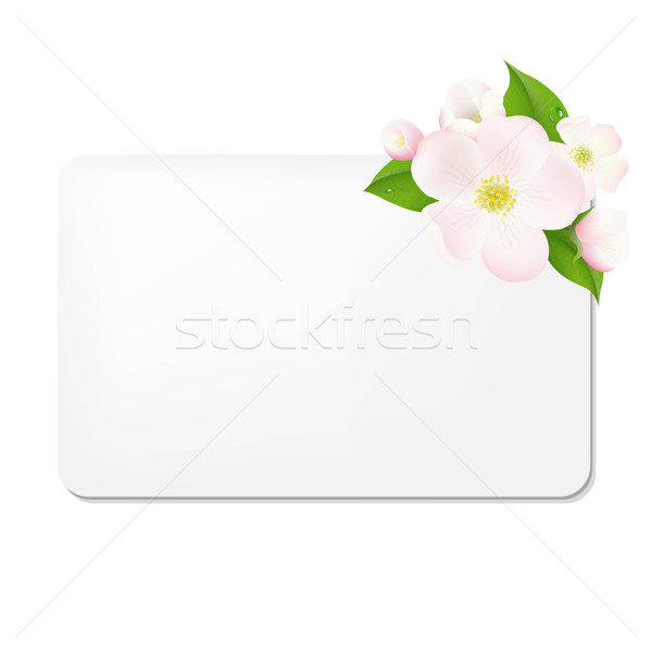 Apple Tree Flowers With Blank Gift Tags Stock photo © cammep