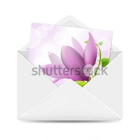 Dar tag magnolia odizolowany biały kwiat Zdjęcia stock © cammep