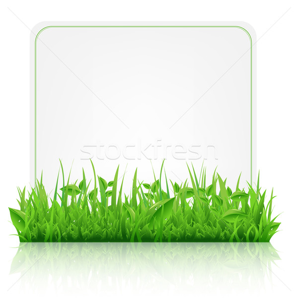 Green Grass With Paper Sheet Stock photo © cammep