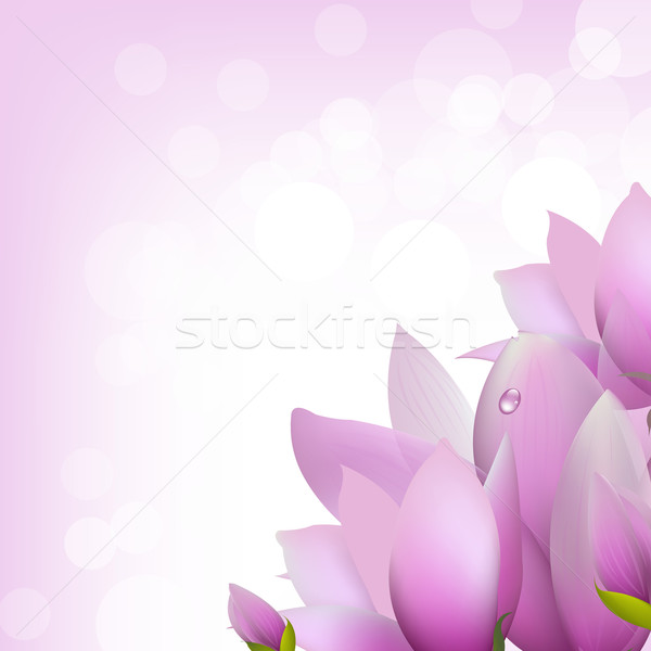 ぼけ味 女性 花 春 背景 ストックフォト © cammep