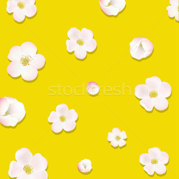 Apple Tree Flowers Poster Stock photo © cammep