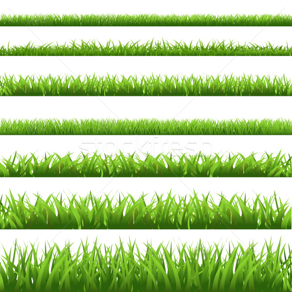 Green Grass Set Stock photo © cammep