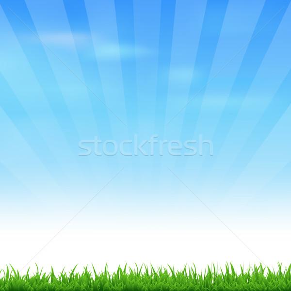 Fű tájkép égbolt vektor tavasz természet Stock fotó © cammep