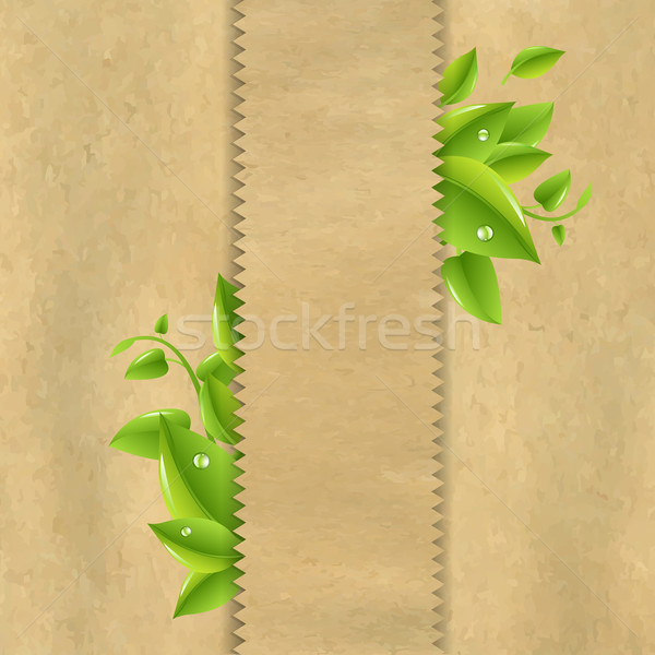 Old Paper With Green Leaves Stock photo © cammep