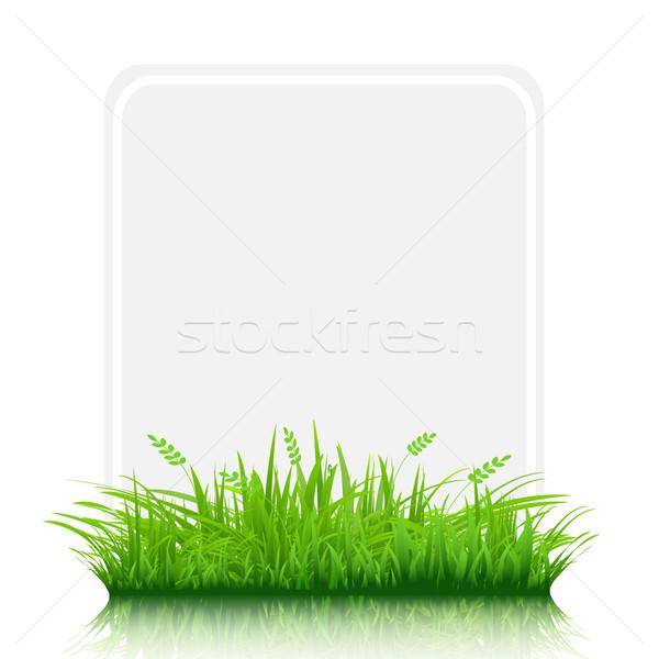 Trawy granicy papieru dar tag odizolowany Zdjęcia stock © cammep