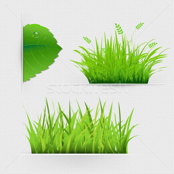 Set Of Dividers With Grass Stock photo © cammep