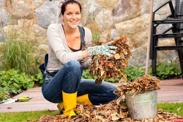 Woman putting leaves gardening cleaning bucket housework Stock photo © CandyboxPhoto